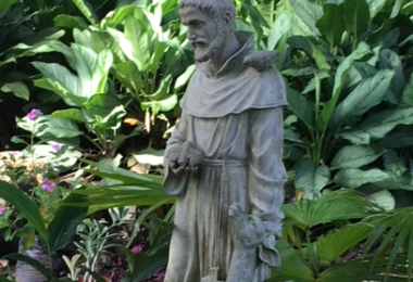 Celebrating St. Francis of Assisi